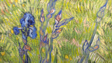 Iris by Vincent Van Gogh 3d Reproduction, Versus Art - CultureLabel - 2