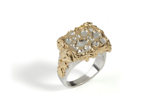 The Kingslayer Ring, Ros Millar - CultureLabel