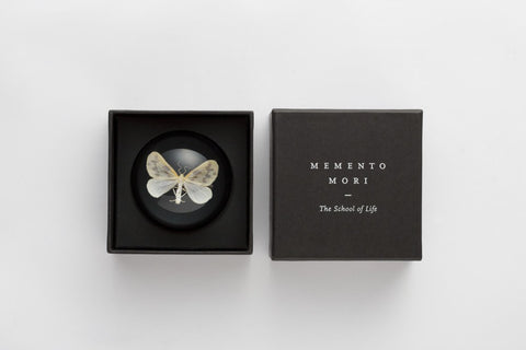Memento Mori Paperweight: Moth, The School of Life Alternate View