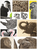 Menagerie, Jane Peart - CultureLabel - 1