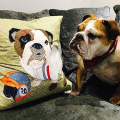 Bespoke Dog Cushion, Mia Loves Jay