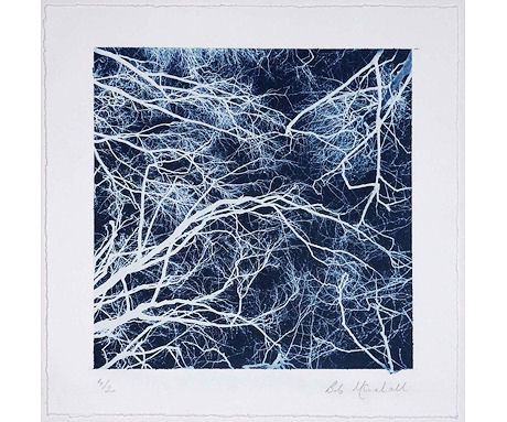 Tree Study in Negative #1, Bob Marshall - CultureLabel - 1
