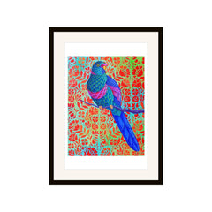 Blue Parrot, Jane Tattersfield