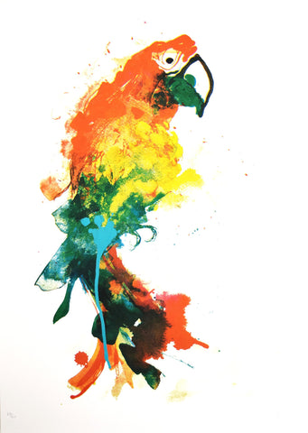 Parrot Limited Edition Screen Print, Gavin Dobson