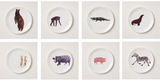 Holly's Ark Set of 8 Plates, Holly Frean