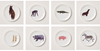 Holly's Ark Set of 8 Plates, Holly Frean - CultureLabel