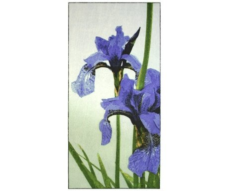 Irises Woodblock, Claire Cameron-Smith