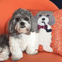 Bespoke Pet Cushion, Mia Loves Jay Alternate View