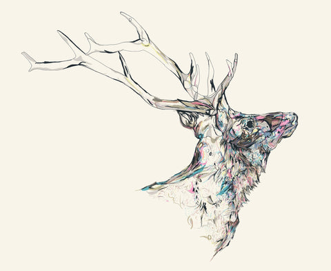 Mineral Stag MMXVI, Susie Wright - CultureLabel
