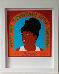 No Mountain (Tammi Terrell), Mr Woo Woo Alternate View