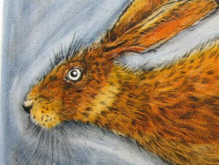 Running Hare, Ian MacCulloch Alternate View