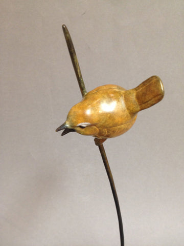 Wren on a Reed, David Meredith - CultureLabel - 1