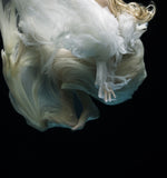 Angel 4, Zena Holloway - CultureLabel