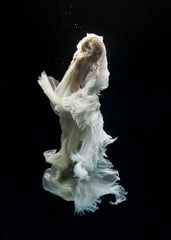 Angel 6, Zena Holloway