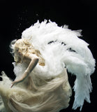 Angel 9, Zena Holloway - CultureLabel
