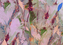 Botanical Collage #1, David McConochie Alternate View