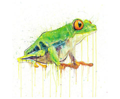 Tree Frog - Diamond Dust Edition, Dave White