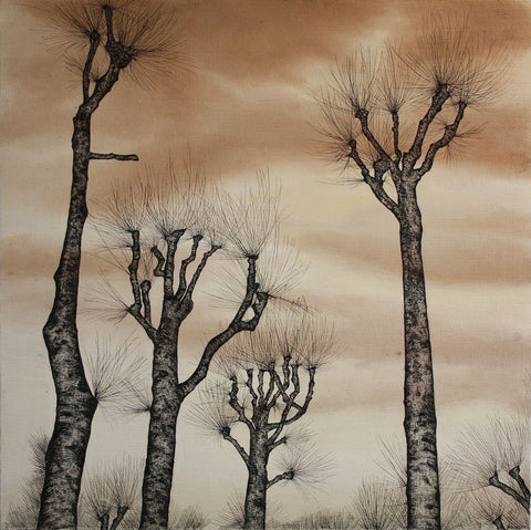 Trees in the Sky #8: The Memory of Trees, Darragh Powell