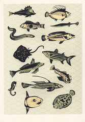 Yellow Japanese Fish, Eliza Southwood