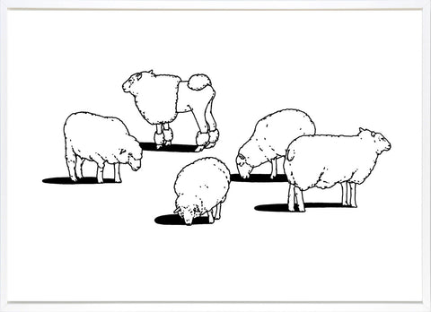 Sheep, Outline Editions - CultureLabel - 1