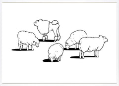 Sheep, Outline Editions