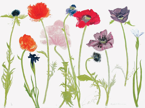 Oriental Poppies, Elizabeth Blackadder - CultureLabel