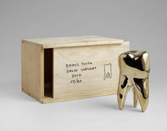 Brass Tooth, David Shrigley