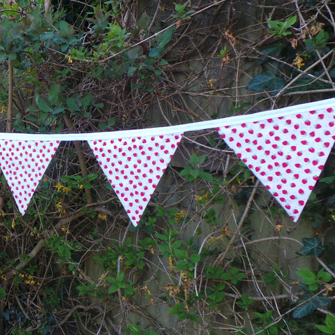 Beautiful Bunting Strawberry Print