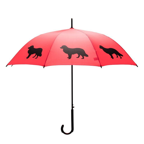 San Francisco Umbrella Company Border Collie Black on Red