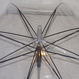 Ladies Umbrella Dome Clear Border Silver