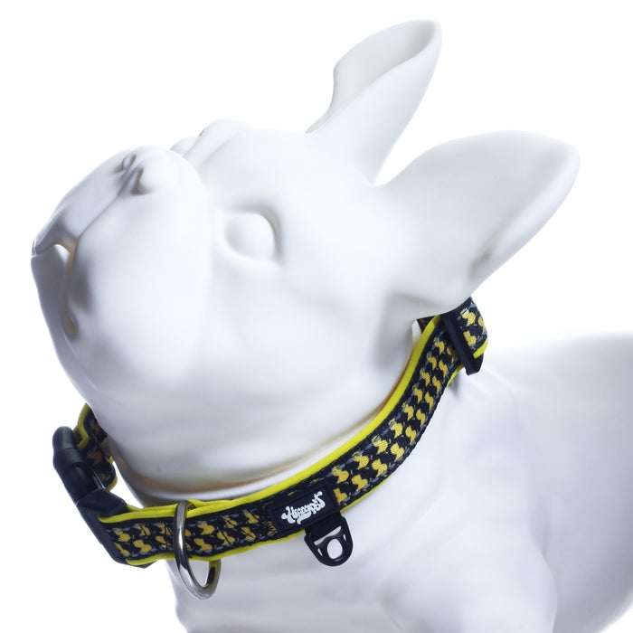 Medium ErrlyBird Collar