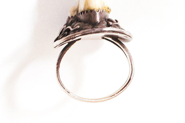 Mystery Tooth Amulet Ring