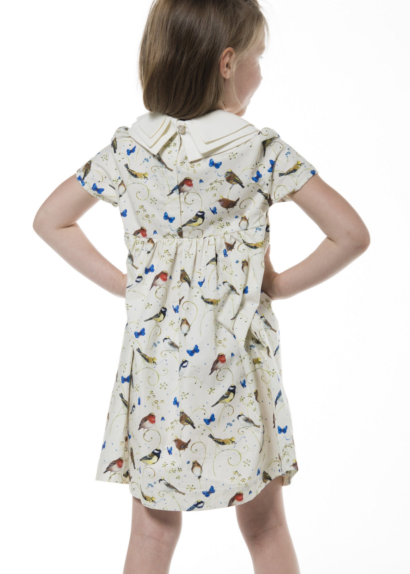Three Collars Girl Dress - Birds