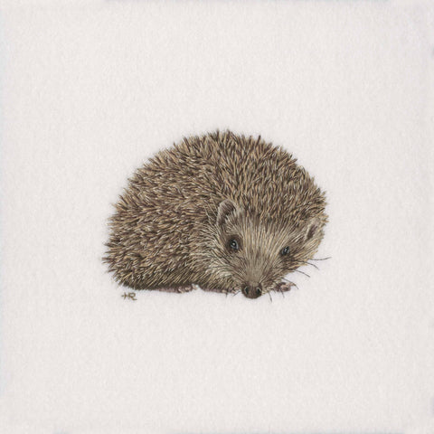 Hedgehog Original Hand Embroidery