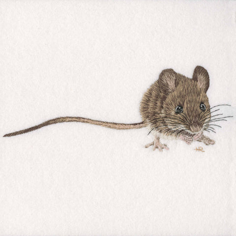 Wood Mouse Prints and Cards