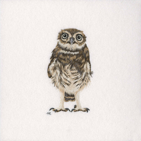 Little Owl Original Hand Embroidery
