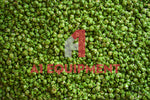 Ready-Made Green Apple Popcorn 4kg