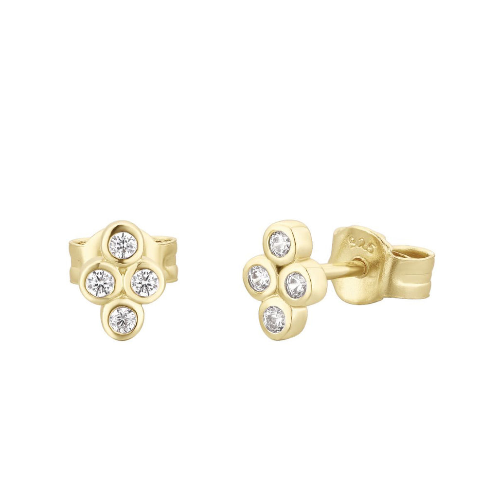 White Stones Earrings