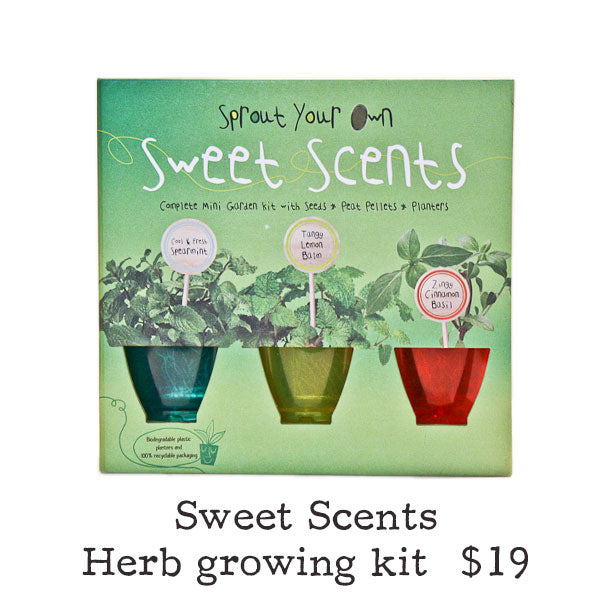 Sweet Scents Herb Growing Kit