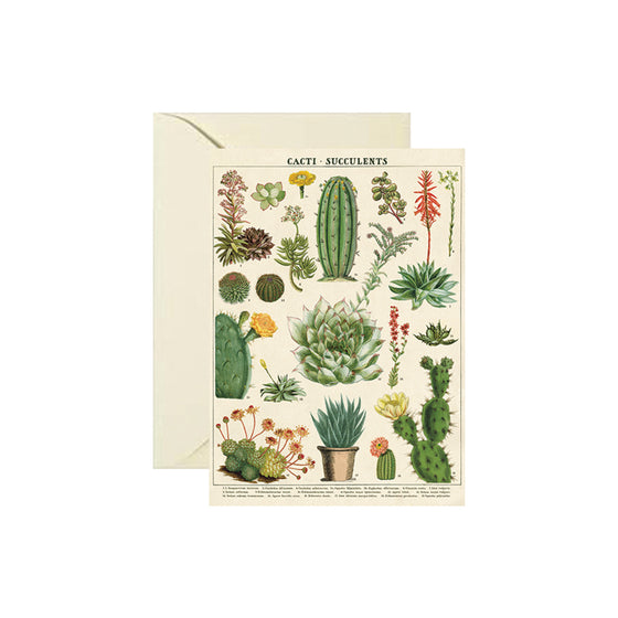 Succulents Card Cavallini - Foursided