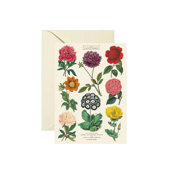 Botanica Card Cavallini - Foursided