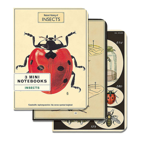 3 Mini Insect Notebooks - Foursided - Cavallini - 1