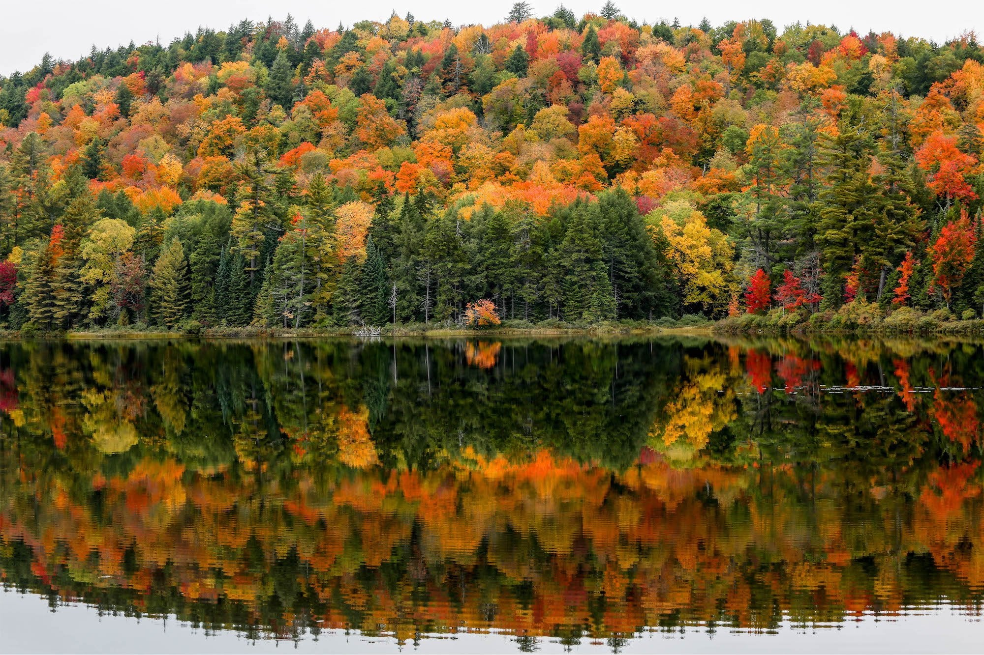 Autumn in the Adirondacks | Pure Adirondacks