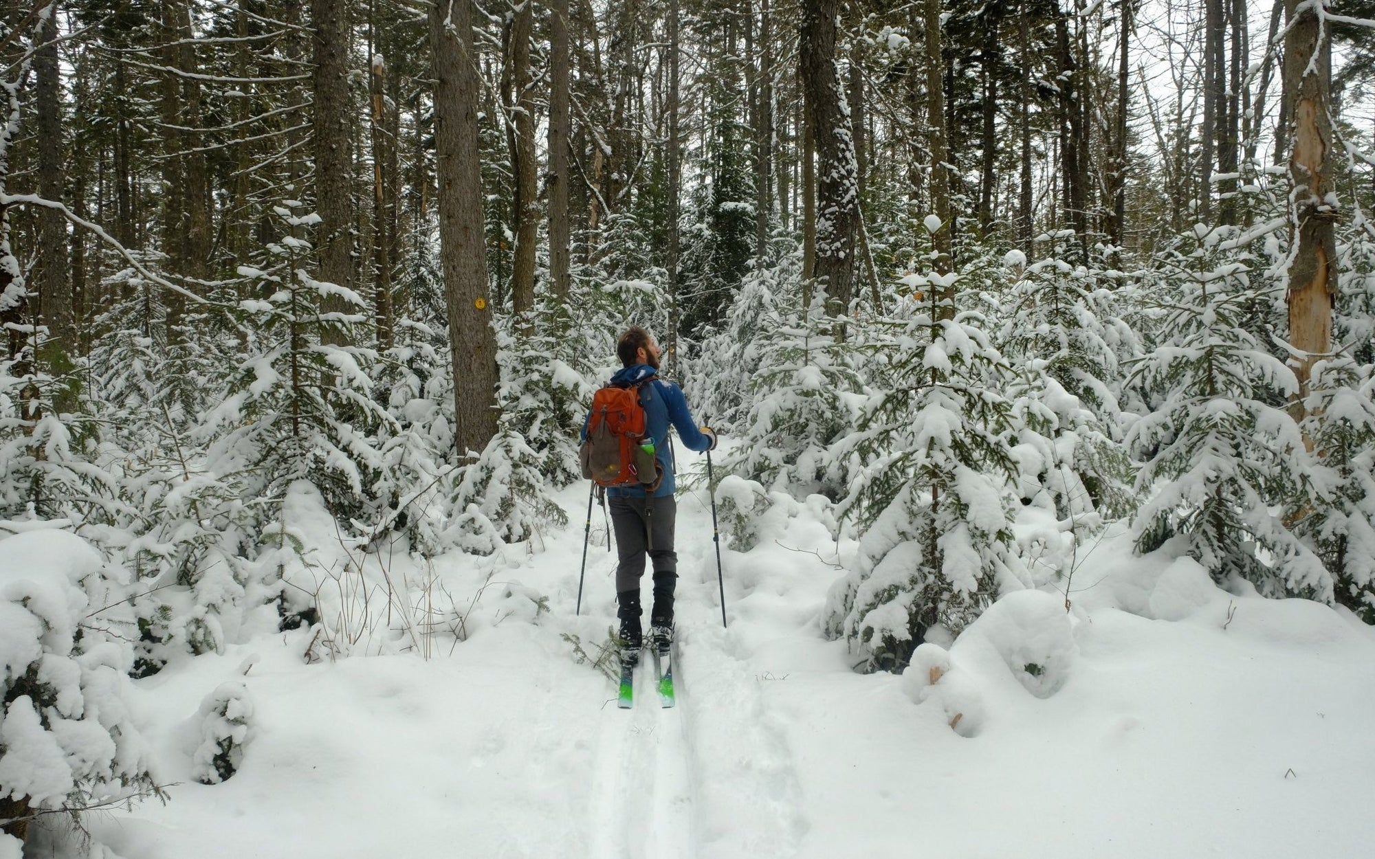 Foxy Brown Ski Loop | Piseco, NY