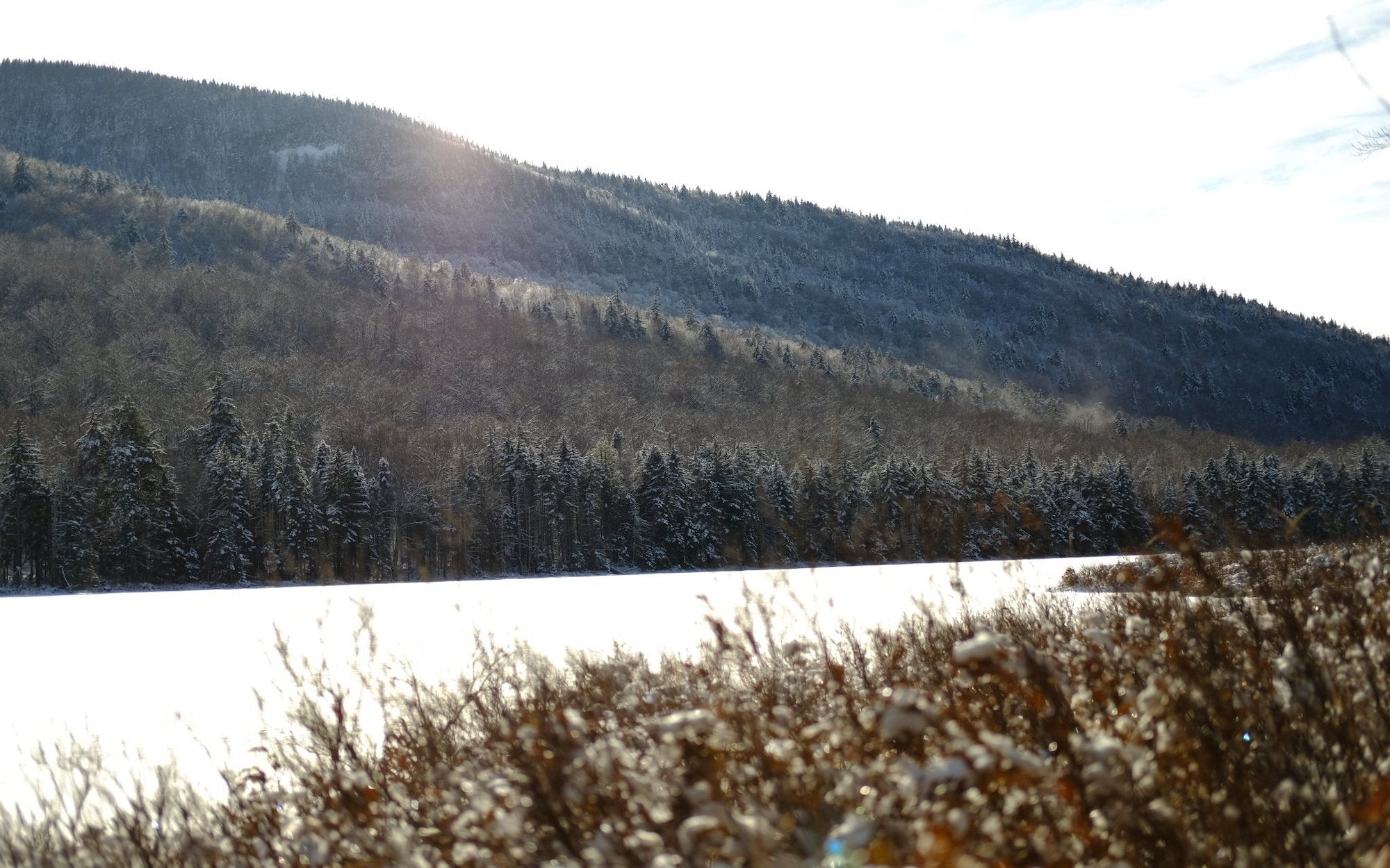 Snowshoe to Puffer Pond | Pure Adirondacks