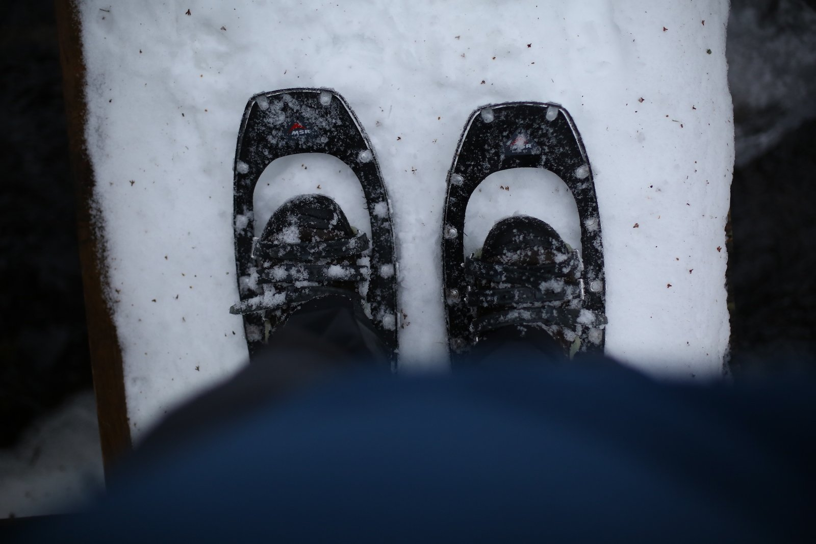Queer Lake Winter Snowshoe | Pure Adirondacks