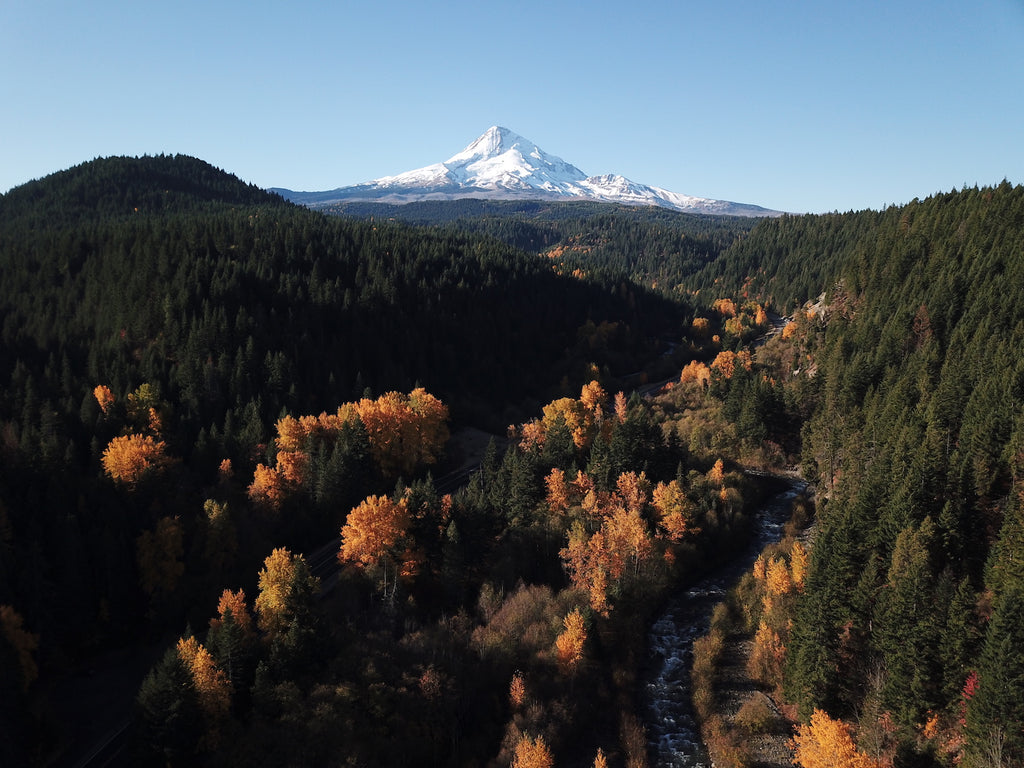 Mt. Hood National Forest | Hood River, Oregon