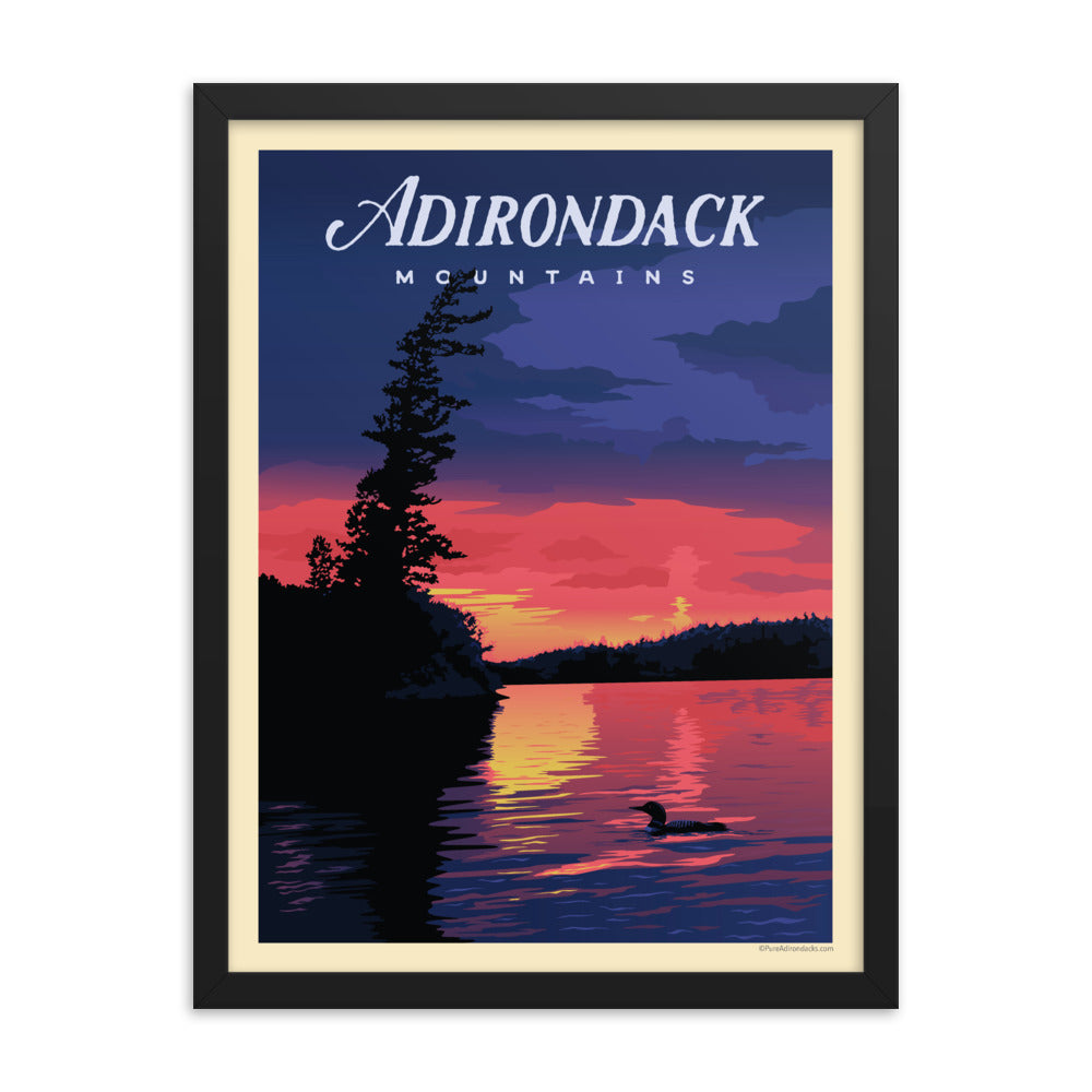 Vintage Poster | Common Loon - Pure Adirondacks