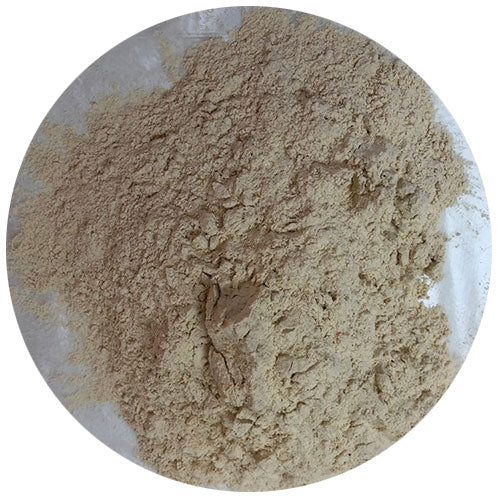Garlic Powder 500g N/A