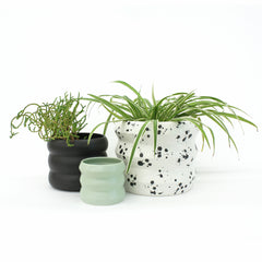 Medium Planters / Freckle - Corbé